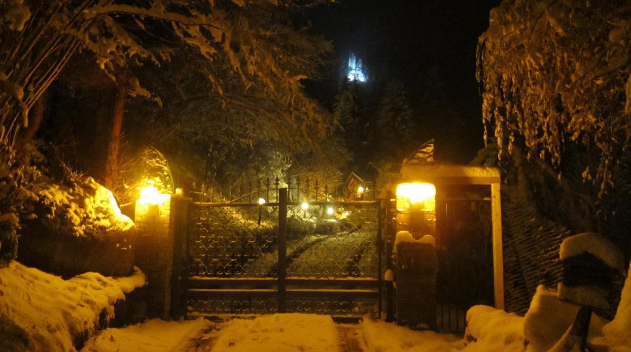 Chalet éclairé en hiver (2)